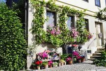 Traumhafte Ferienwohnung im Landhaus im Grünen