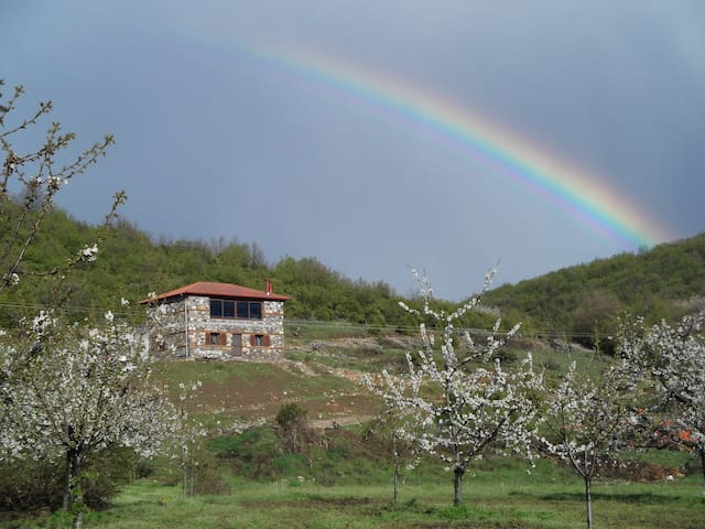 PLEMNA - Kelly's House - Kerasies - Casa de camp