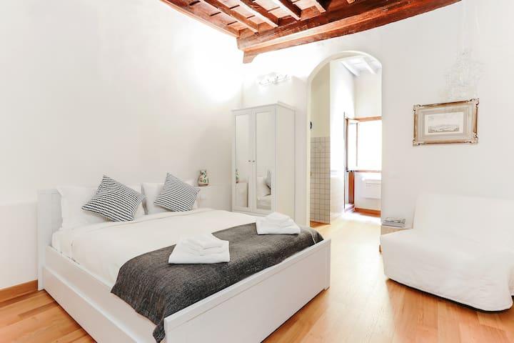 Delightful flat in front of Santa Croce