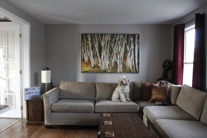 Cozy bedroom in West Galt - minutes from trails - Cambridge - House