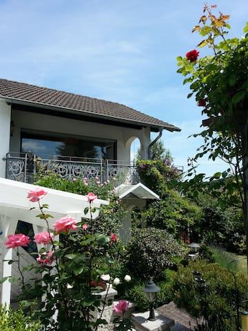 Fewo Angela III (Westerwald) - Bad Marienberg (Westerwald) - Apartment