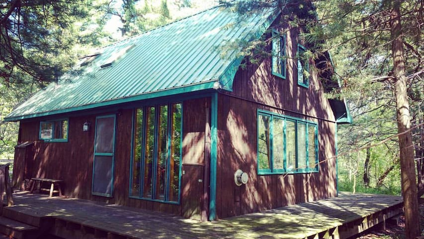Cute cabin, nestled in woods near lakes - Neshkoro - Cabana