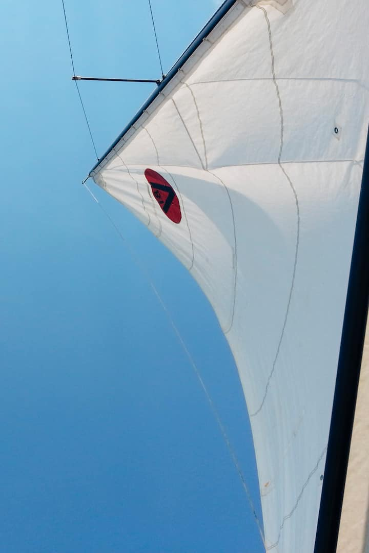 Sailing under a clear blue sky