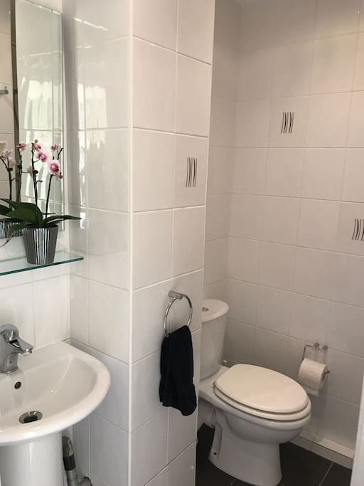 Clean and private ground floor shower room