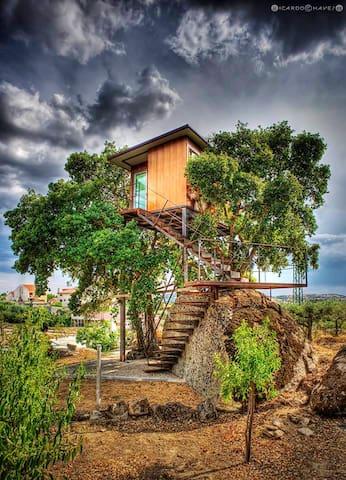 Bello bungalow con accesso piscina