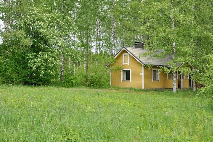 Недорогой домик в Kesälahti