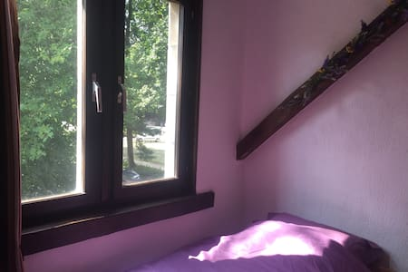 Green Silence: Lavendel