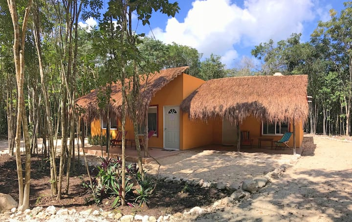 House for rent in Calakmul