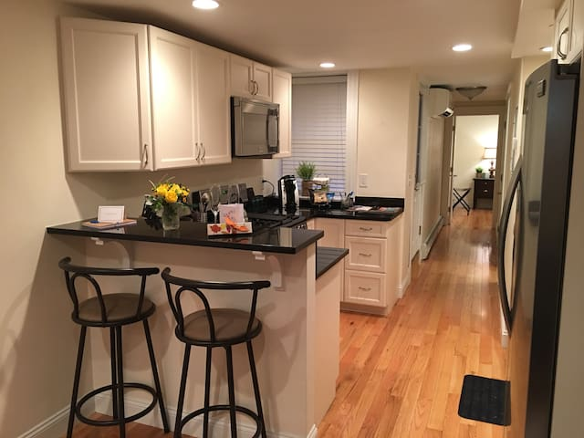 Huge 2Bd/2Ba in Gorgeous Beacon Hill - Boston - Condominium