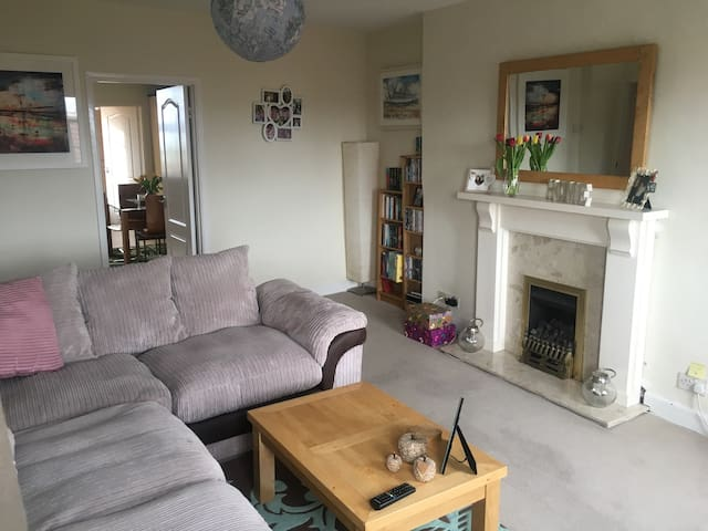 Large 1 bed flat in ideal location - Bristol - Daire