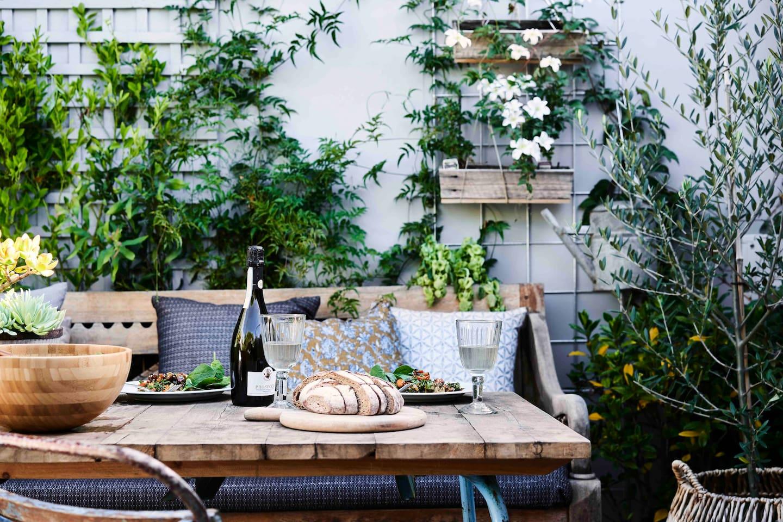 Beautiful sunny leafy green courtyard garden space.