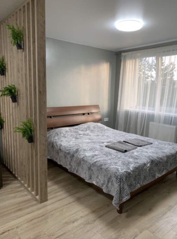 Modern, one-room studio.