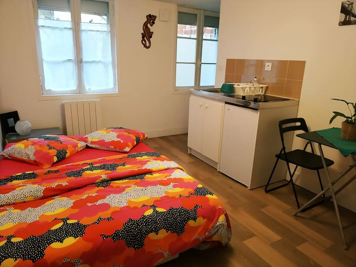 Appartement centre de Bordeaux avec jardin