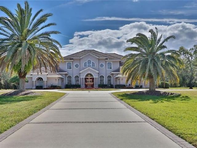 NEW! Million Dollar Estate in Tarpon Springs