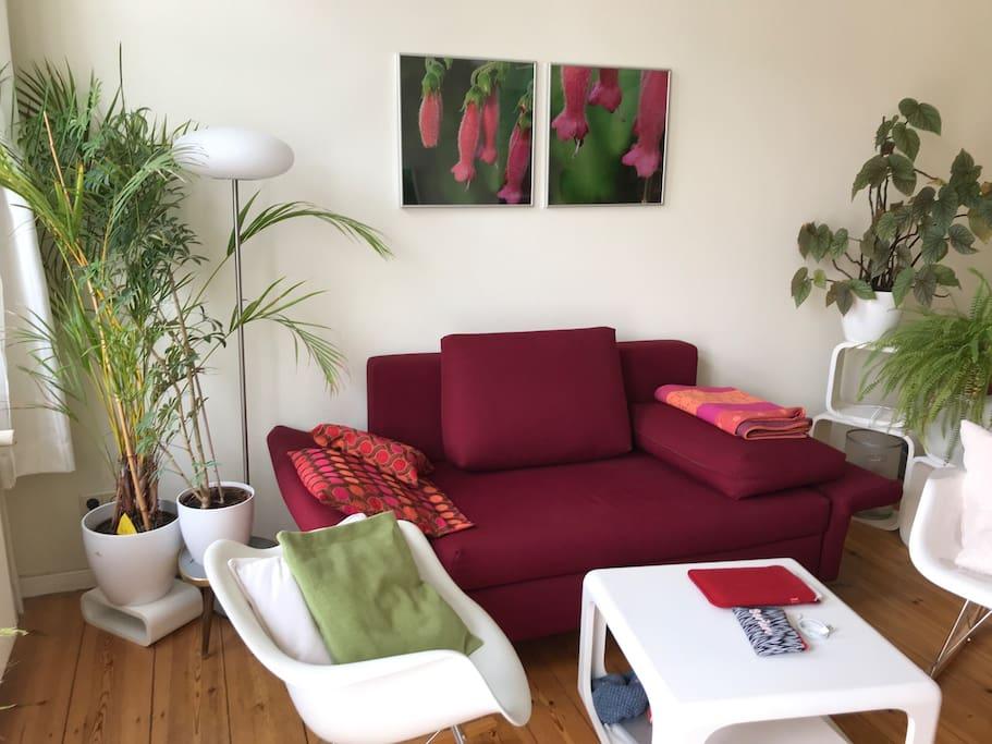 living room incl. sofa bed