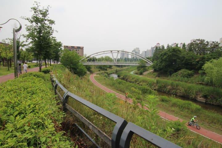 숙소앞 신동 까페거리 산책로 입니다.^^