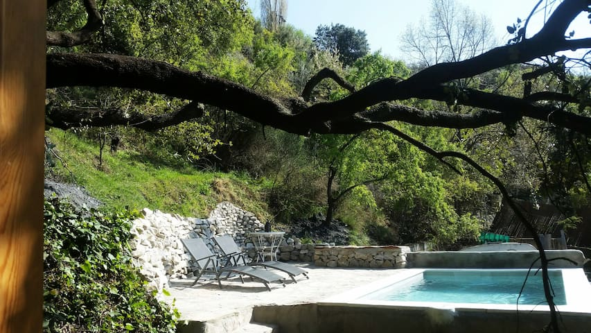 Cabaña debajo de la Encina con piscina