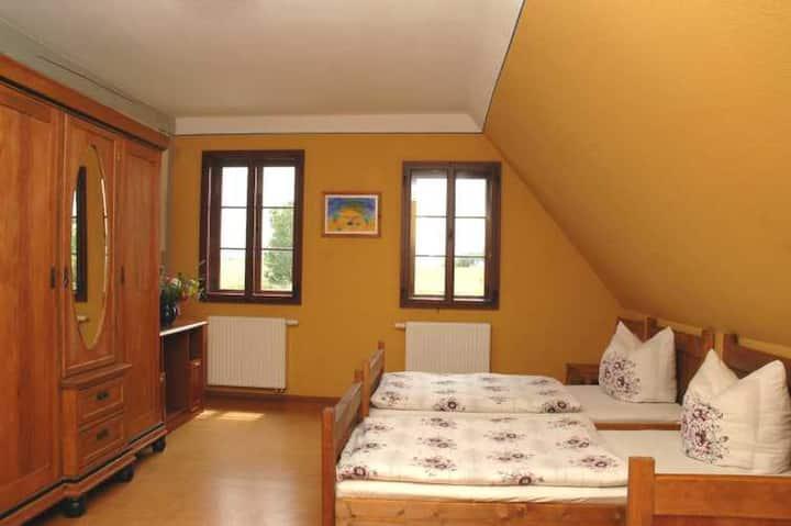 Jugendgästehaus Nickelsdorf (Crossen OT Nickelsdorf) - LOH06274, Doppelzimmer mit Dusche und WC