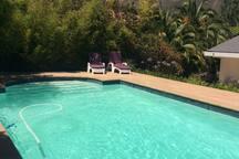 Pool with Jonkershoek Mountain view, Jan 18