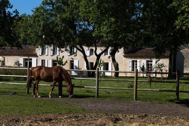 Les Cinq Sens du Château Mayne Lalande - Chambre 2