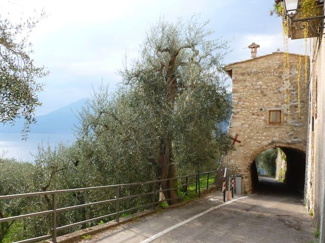 """Appartamento """" Al Vòlt- tra gli olivi secolari - Brenzone sul Garda - Apartment"""