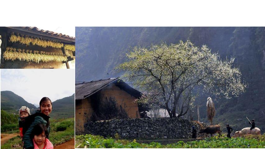H'Mong Homestay & Trekking Tour in Dong Van
