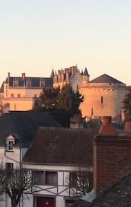 Charmante maison a 100m du château - Amboise