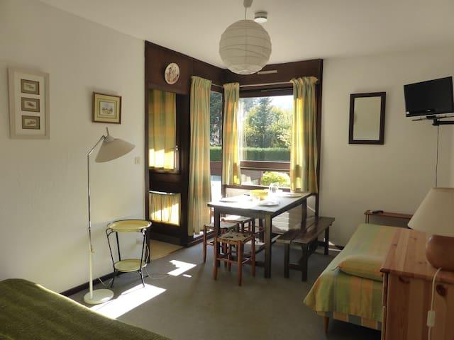 Studio spacieux et cosy 4p près des pistes et centre-ville
