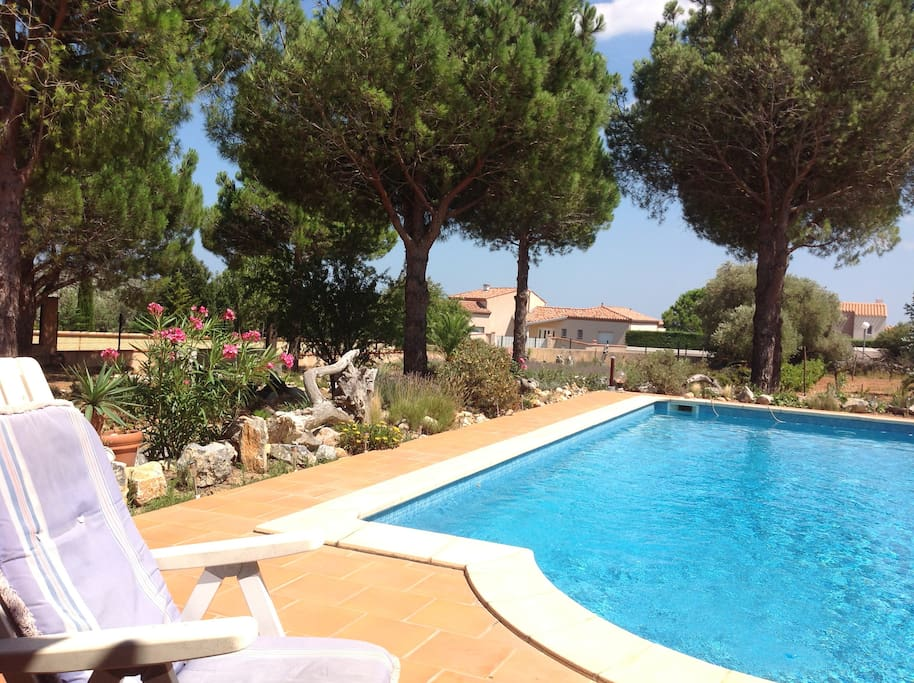 Studio 3 pers avec jardin et piscine houses for rent in for Palme de piscine