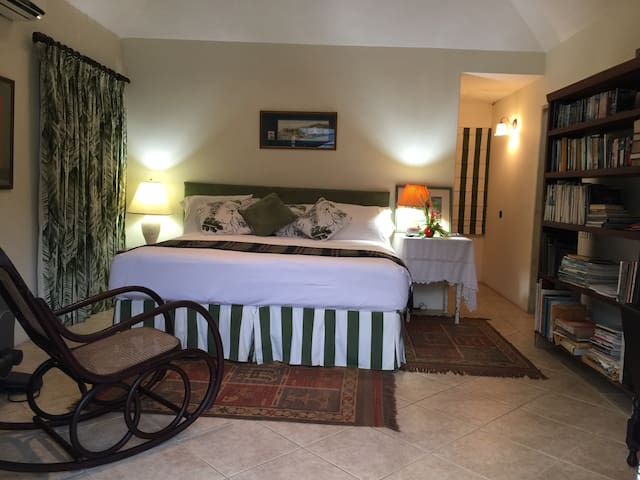 Bedroom with walk in closet and en suite bathroom