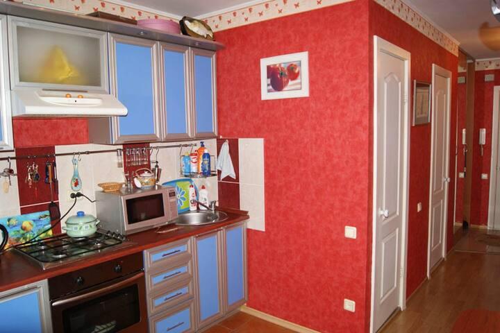 Уютная квартира Чернышевского(Лента)