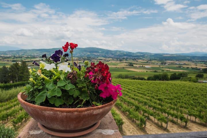 Agriturismo Chiorri nel cuore verde dell'Umbria-4p