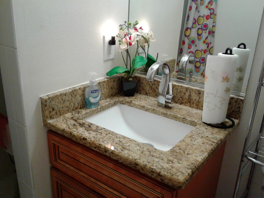 sink in guest area