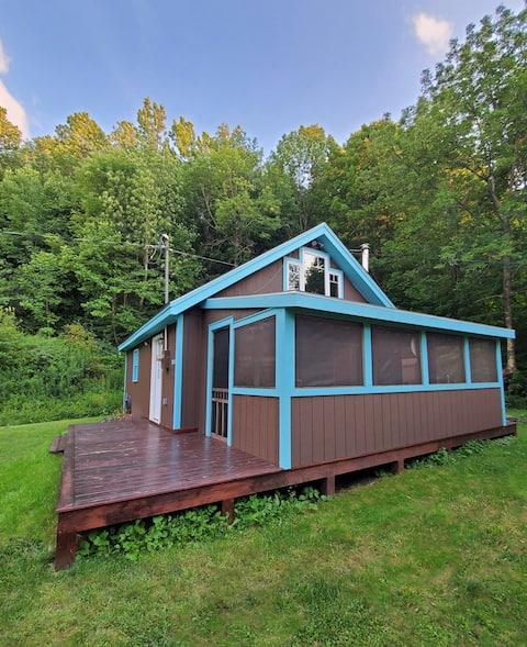 Relaxing 2 bedroom cabin in the Catskills