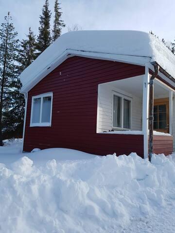 Calm cabin in beautiful Altajärvi.