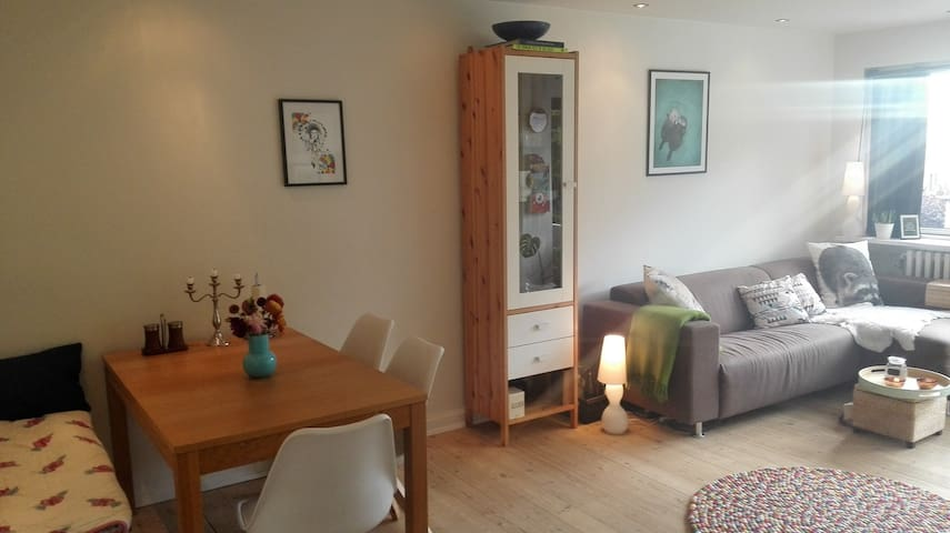 Cozy apartment with a great view in Odense C - Odense - Apartamento