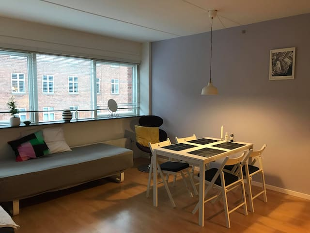 Nice, cosy and clean 1-bedroom apartment in CPH