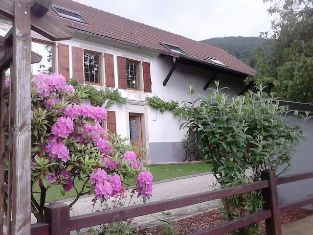 """Terre des Plantes"" - Grosmagny - Guesthouse"