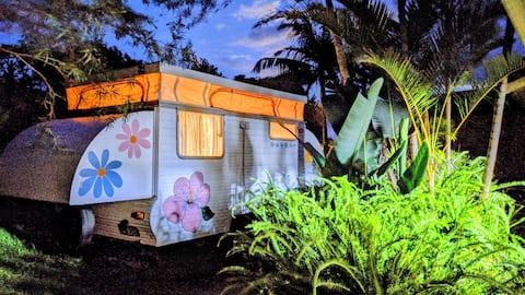 cosy caravan near local beaches