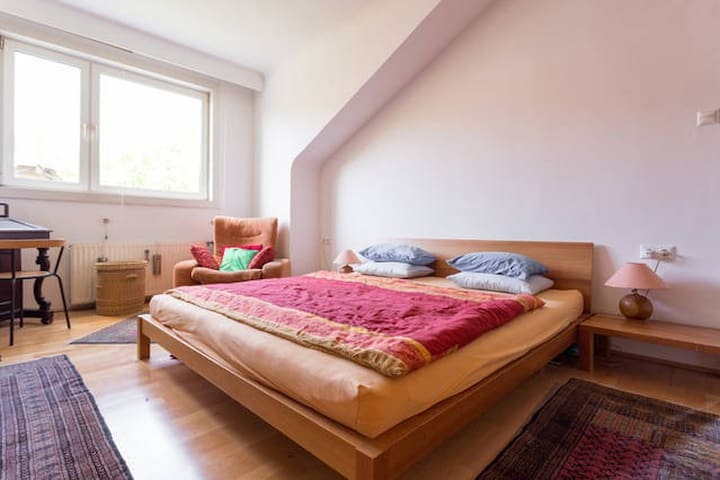 Private Room in Spacious Flat 2 - Vienna