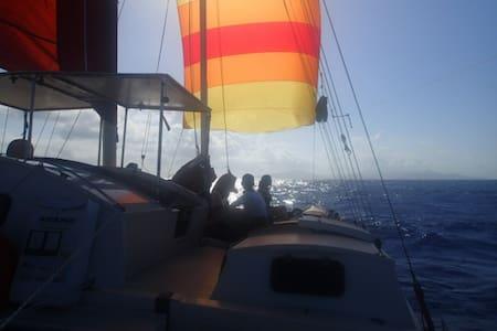kattu catamaran polynésien - papara