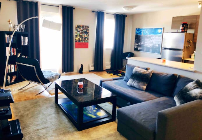 Newly Renovated Elegant ModernStyle Lakeview Condo