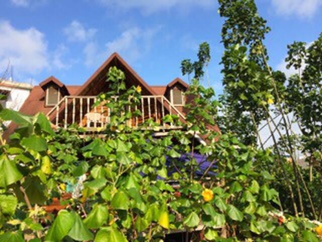 The boat house Galápagos, Cristóbal