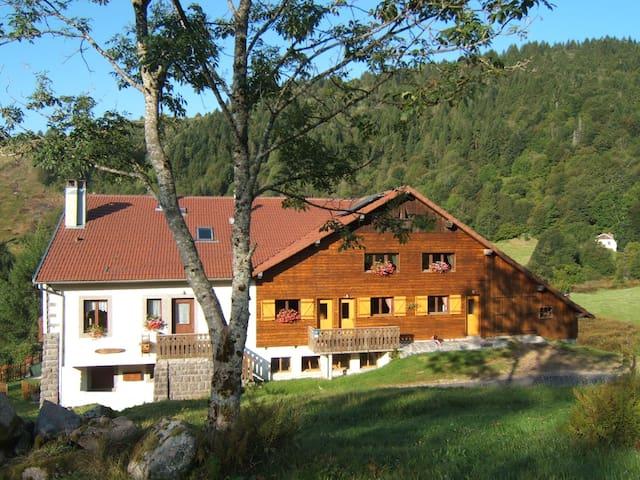 Location  tout confort  en pleine nature - La Bresse - Apartamento