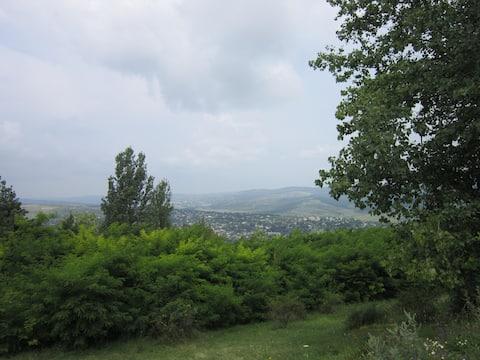 Răciula Countryside Retreat | La țară | В деревне
