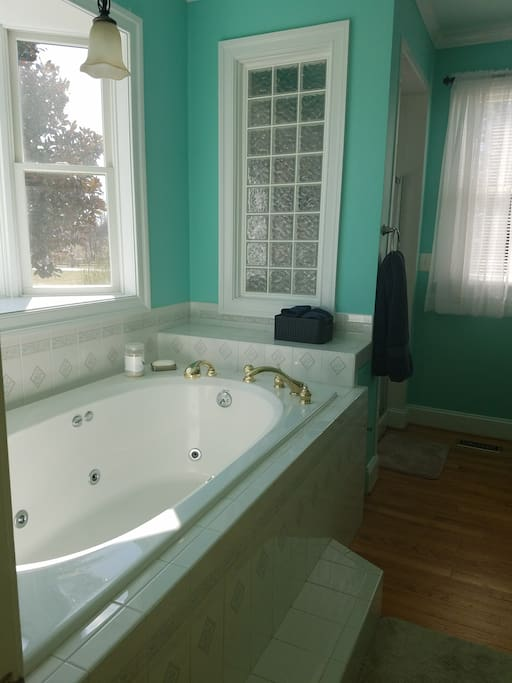 Master bathroom, tub with jets