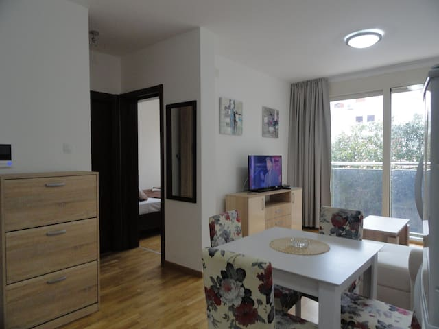 Comfy apartment in center - Budva