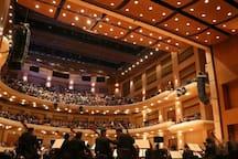 Auditorio de eventos de la biblioteca  : - Conciertos, zarzuelas, teatro etc.