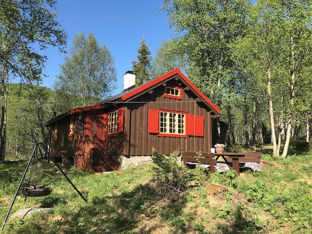 Koselig  hytte på Ål
