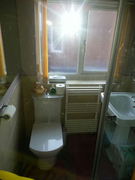 Private bathroom with shower.